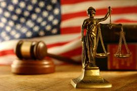 Litigation Success